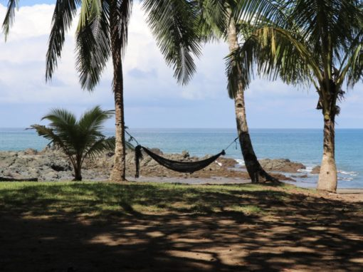 Costa Rica : voyage au coeur de la nature
